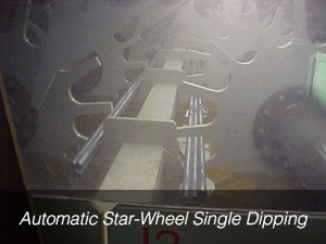 Automatic Star-Wheel Single Dipping